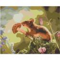 Белка с грибом Раскраска картина по номерам на холсте