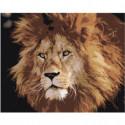 Брутальный лев Раскраска картина по номерам на холсте