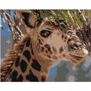 Жираф Раскраска картина по номерам на холсте
