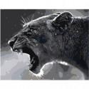 Черно-белая львица Раскраска картина по номерам на холсте