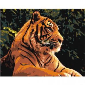 Величественный тигр 80х100 Раскраска картина по номерам на холсте