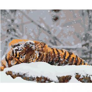 Тигр на снегу Раскраска картина по номерам на холсте