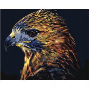 Пестрый орел Раскраска картина по номерам на холсте