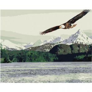 Орел парящий над горным озером 80х100 Раскраска картина по номерам на холсте