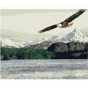 Орел парящий над горным озером Раскраска картина по номерам на холсте