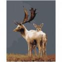 Олень и олененок Раскраска картина по номерам на холсте