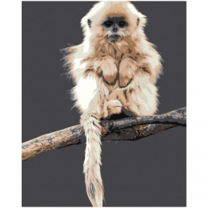 Пушистая обезьяна Раскраска картина по номерам на холсте