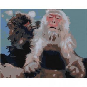 Серая обезьяна 80х100 Раскраска картина по номерам на холсте