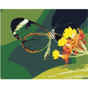 Бабочка на цветке 100х125 Раскраска картина по номерам на холсте