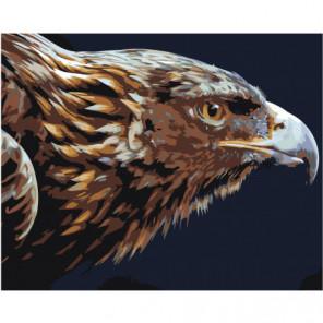 Голова летящего орла 100х125 Раскраска картина по номерам на холсте