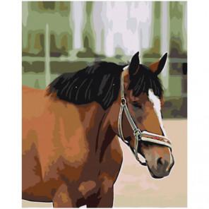Гнедой конь 100х125 Раскраска картина по номерам на холсте