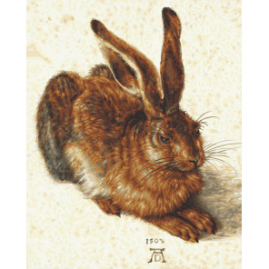 Заяц по мотивам Альбрехта Дюрера Раскраска картина по номерам Schipper (Германия) 9130809