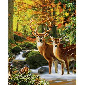 Олени в лесу Раскраска картина по номерам Schipper (Германия) 9130810