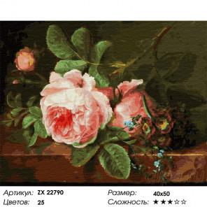 Сложность и количество цветов Розовый пион Раскраска картина по номерам на холсте ZX 22790