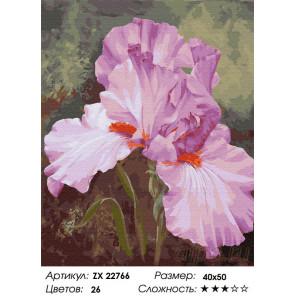 Сложность и количество цветов Розовый ирис Раскраска картина по номерам на холсте ZX 22766
