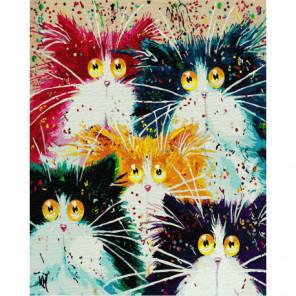 5 кошек Раскраска картина по номерам на холсте