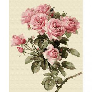 Веточка розы Раскраска картина по номерам на холсте