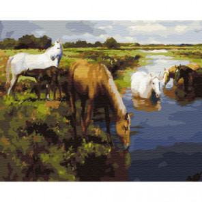 Лошади у реки Раскраска картина по номерам на холсте