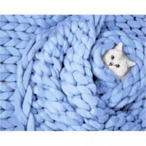 Котик в вязаном пледе Раскраска картина по номерам на холсте