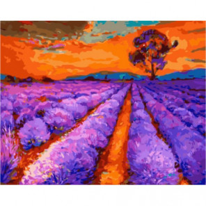 Багряный закат над лавандовым полем Раскраска картина по номерам на холсте
