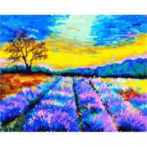 Красочное утро Прованса Раскраска картина по номерам на холсте