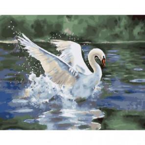 Лебедь на пруду Раскраска картина по номерам на холсте