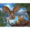 Совиное гнездо Раскраска картина по номерам на холсте