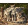 Волчицы Раскраска картина по номерам на холсте