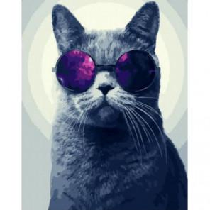Кот в очках Раскраска картина по номерам на холсте