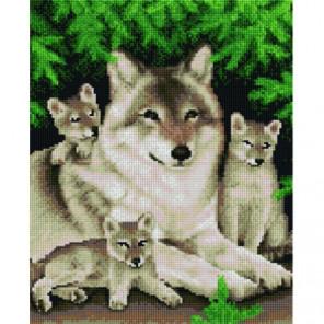 Счастливая волчица Алмазная мозаика вышивка Painting Diamond