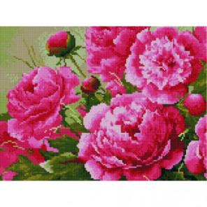 Розовые пионы Алмазная мозаика вышивка Painting Diamond