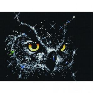 Звездная сова Алмазная мозаика вышивка Painting Diamond