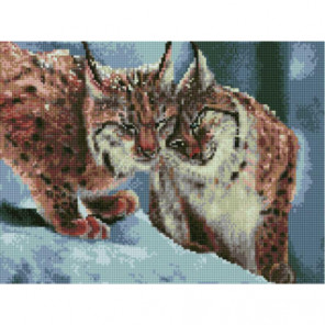 Тепло рыси Алмазная мозаика вышивка Painting Diamond