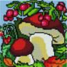 Грибы и ягоды Алмазная мозаика вышивка Painting Diamond