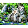 Белые тигры Бенгалии Super 3D пазлы с эффектом трехмерного объемного изображения