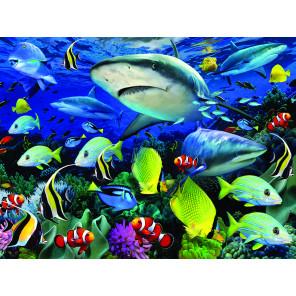 Акульи воды Super 3D пазлы с эффектом трехмерного объемного изображения 13688