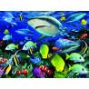 Акульи воды Super 3D пазлы с эффектом трехмерного объемного изображения