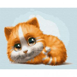 Котенок с большими глазками Раскраска картина по номерам на холсте
