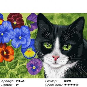Сложность и количество цветов Кот в анютиных глазках Раскраска картина по номерам на холсте Белоснежка 294-AS