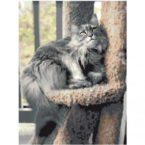 Пушистый серый кот 75х100 Раскраска картина по номерам на холсте