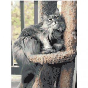 Пушистый серый кот Раскраска картина по номерам на холсте