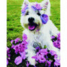 Милый пёс в цветах Алмазная мозаика вышивка Painting Diamond