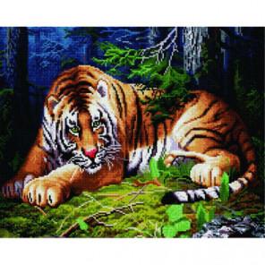 Лесной тигр Алмазная мозаика вышивка Painting Diamond