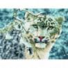 Взгляд снежного барса Алмазная мозаика вышивка Painting Diamond