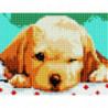 Сонный щенок Алмазная мозаика вышивка Painting Diamond