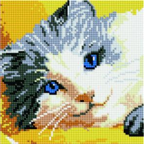 Голубоглазая кошка Алмазная мозаика вышивка Painting Diamond