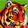 Тигр Алмазная мозаика вышивка Painting Diamond