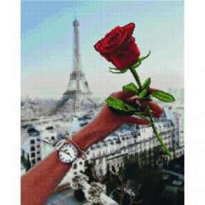 Роза Парижа Раinting Diamоnd Алмазная мозаика вышивка Painting Diamond