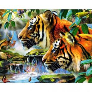 Два тигра Раскраска картина по номерам на холсте