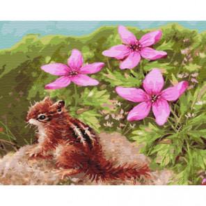 Бурундук и цветы Раскраска картина по номерам на холсте